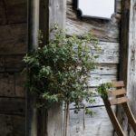 Treplanker på vegg og platting med utemøbler i treverk